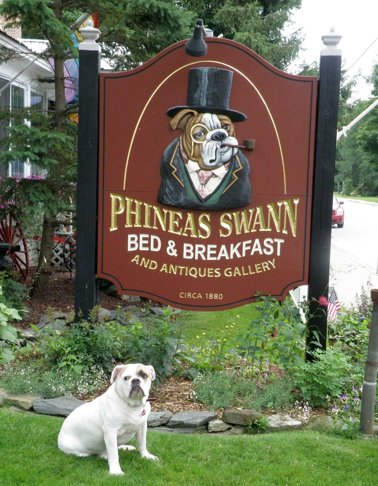 We Love Your Dogs Phineas Swann Bed And Breakfast Inn