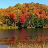 Top 5 Top of Vermont Fall Foliage Spots